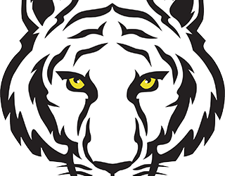"""Revised Forums @ """"The Tigers Lair"""""""