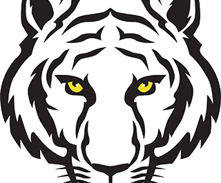"Revised Forums @ ""The Tigers Lair"""